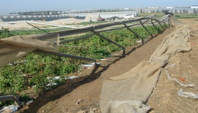 נזקי טבע בחקלאות