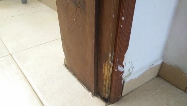 נזק לקורות הדלתות בבית